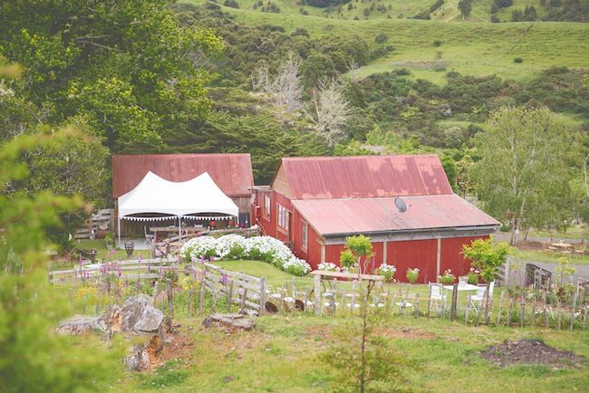 Gorgeous, Rustic barn wedding venue | Truly & Madly Stories | Fun and Relaxed at Rustic Wedding Venue Boutique Barn in Puhoi, Auckland, New Zealand. #weddings #NZweddings #venues #nzvenues #rusticvenue