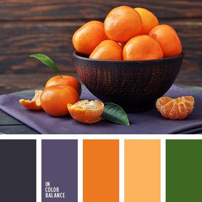 Color Palette No. 1975