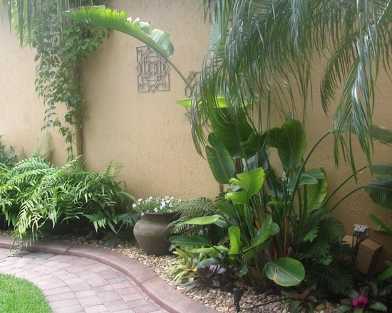 Tropical Landscape Design Pictures Remodel Decor And