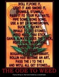 Funny weed pic 15