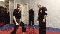 Learn self defence from a youtube viral hit - Imgur Hilarious #gangnamstyle #prank