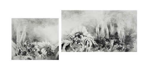 A birth in the misty forest. Pencil, graphite powder on paper. 2013