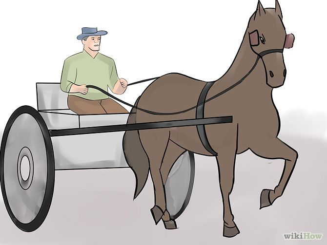 73 best horse cartdriving images on pinterest horse training how to train a horse to drive 12 steps with pictures wikihow ccuart Choice Image