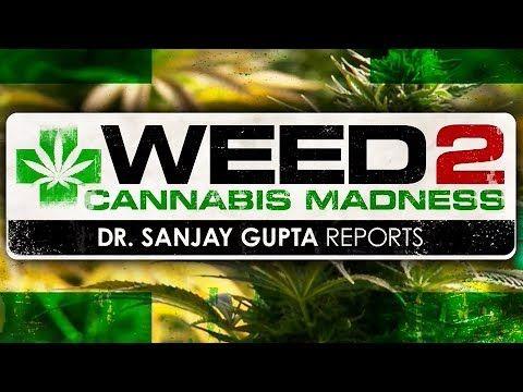 WEED 2 - Cannabis Madness - Dr. Sanjay Gupta Reports (Full HD 1080p - 2014 CNN Documentary) - YouTube
