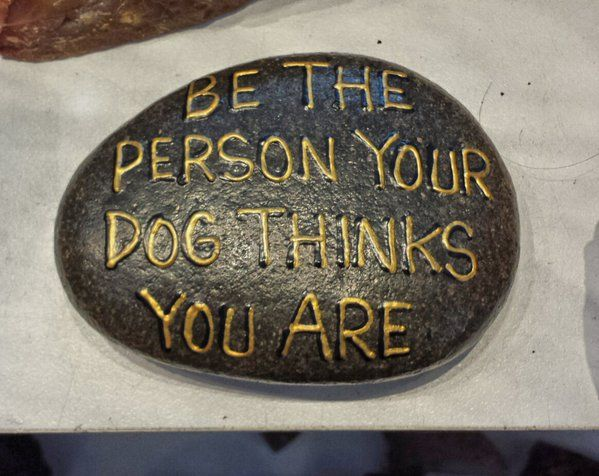 Embedded image permalink Opal's Artistry in Flowers& Balloons edmontonflowers.com Be the person your dog thinks you are...