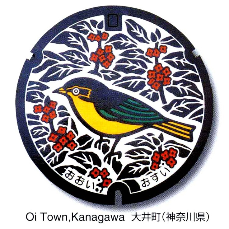 art design | street art | manhole cover | japan | kanagawa