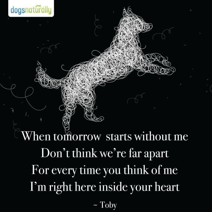 Dog Death Quotes: Best 25+ Dog Memorial Ideas On Pinterest