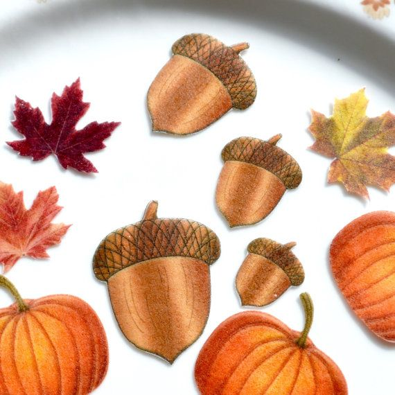 Edible Acorns Autumn Wafer Rice Paper Rustic by WicksteadsEatMe