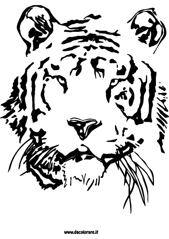 11 best coloriage images on pinterest coloring sheets world and coloring pages - Coloriage tigre ...