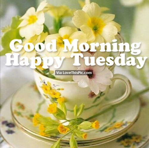 `✫.¸.• ´¯`* ✫´¯`•.¸.* `*✫*Greet the Day *✫* `*.¸.•´¯`✫* ´¯`•.¸. ✫´
