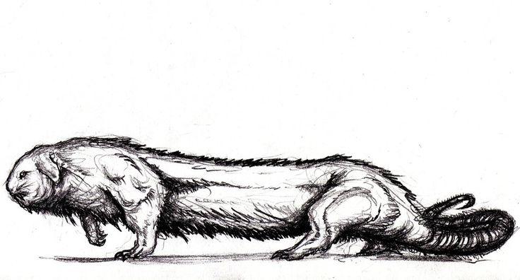 Poe - South Pole Creature by KingOvRats.deviantart.com on @DeviantArt