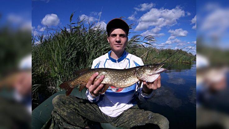 Рыбалка на окуня и щуку. Ловля окуня на Mepps. Отчет с рыбалки