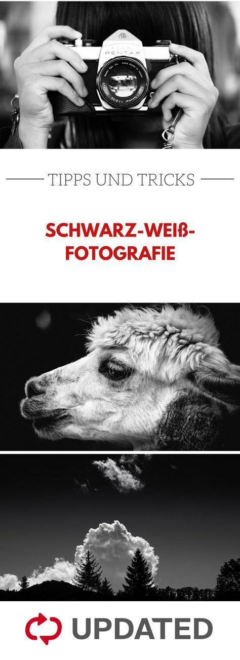 Kontraste richtig nutzen und Motive perfekt in Szene setzen – das ist bei schwarz-weiß-Fotografie besonders wichtig. Mit diesen Tipps gelingt es dir! #schwarzweiß #fotografie #updated