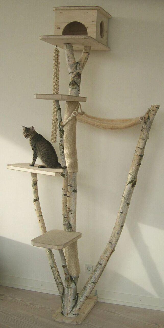 kratzbaume selbst bauen natur kratzbaum selber katze holz avec