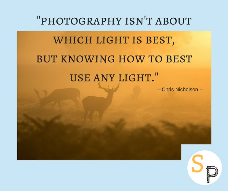 """Photography isn't about which light is best, but knowing how to best use any light."" -- Chris Nicholson  #sunshineandpowercuts #lifeisbeautiful #enjoyitsbeauty #photography #light #bestuseofanylight #offgrid #offthegrid #offgridlife #offgridliving #inspire #inspireothers #inspirationalquotes #inspireotherswithnature"