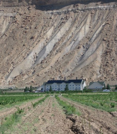 Grand Junction Colorado Winery Tours