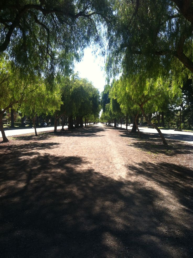12 best euclid ave in upland images on pinterest upland