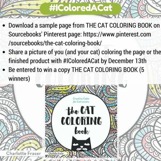 45 Best Cats Images On Pinterest