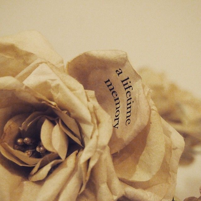 オーダーメイド花冠。  花冠のオーダーを頂きその中の一輪にMessageを。  さらにこちらは奥様へのサプライズプレゼント、とのこと。  奥様にも喜んで頂けたようで、私も一安心^ ^ ありがとうございます!  blog http://s.ameblo.jp/natica-natica/entry-11997748038.html  問合せ natica787@me.com  #natica #vintage #used #50s #60s #70s #80s #90s #ナチカ#アートフラワー#headdress#wedding#handmade#ヘッドドレス#ウエディング#ヴィンテージ#代官山 #恵比寿 #シルクフラワー#アーティシャルフラワー#花冠#古着#オーダーメイド#ハンドメイド#メッセージフラワー#