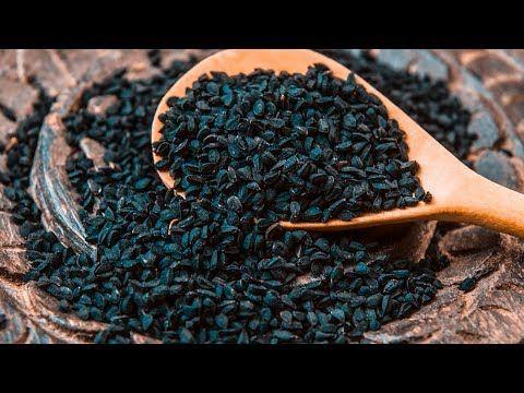 Король всех растений — лечит все болезни, кроме смерти! Невероятно мощные целебные свойства! - YouTube