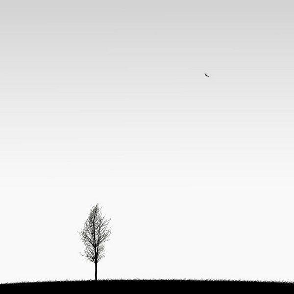 Hossein Zare-Fotografía minimalista