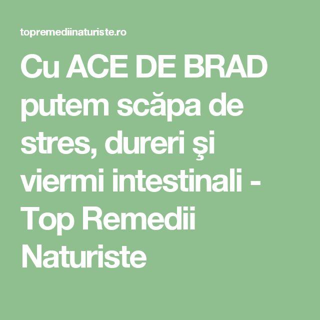 Cu ACE DE BRAD putem scăpa de stres, dureri şi viermi intestinali - Top Remedii Naturiste