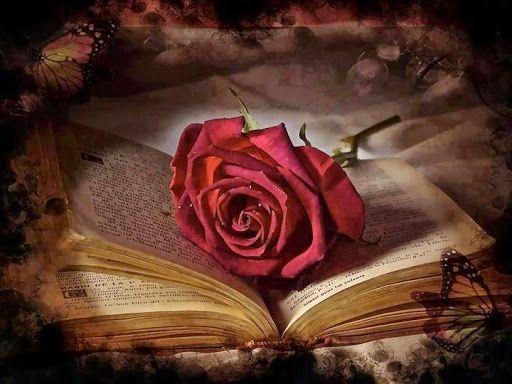 Elhamdulillah; Ne güzel kelamdır halini soranlara.. Hem gizlersin.. - Nur Hayat Şuara - güzel sözler dini anlamlı sözler ayrılık aşk sevgi sözleri mesajları