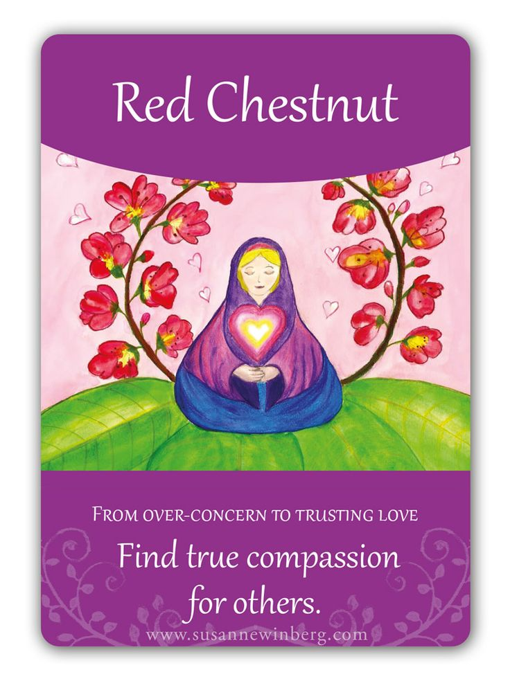 Red Chestnut - Bach Flower Oracle Card by Susanne Winberg. Message: Find true compassion for others.
