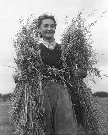 vintage women farming - Google Search