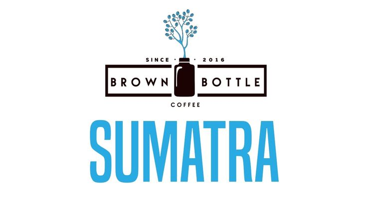 Speciality Sumatra Coffee Beans | Brown Bottle Coffee