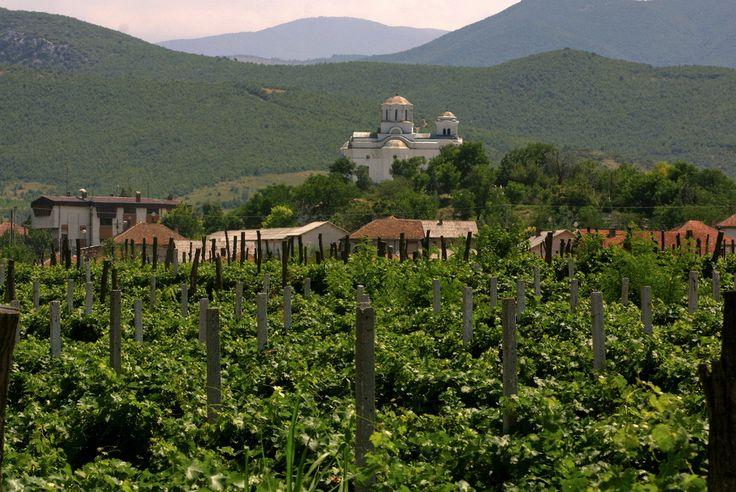 macedonian landscape - photo #27