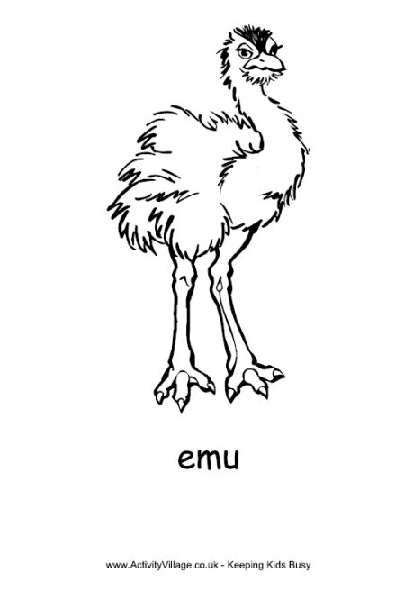 simple outline emu coloring page
