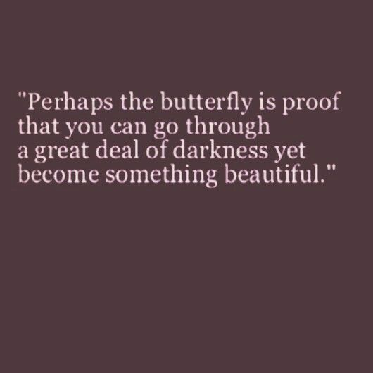Part of why I like butterflies so much