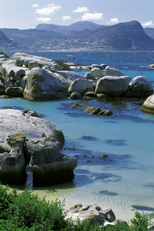 Boulders Beach, Simonstown - South Africa