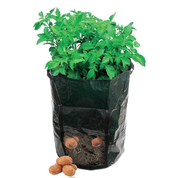 Popular Grow Bag Gardening-Buy Cheap Grow Bag Gardening lots from ...