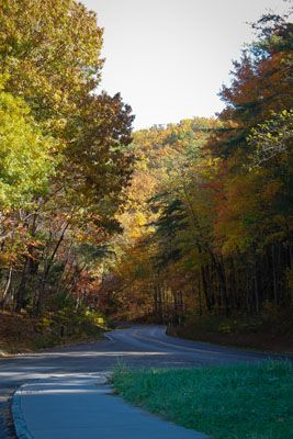A perfect drive from I-40 to The Old Mill through the Great Smoky Mountains National Park.  1 of 8 road trip photos.