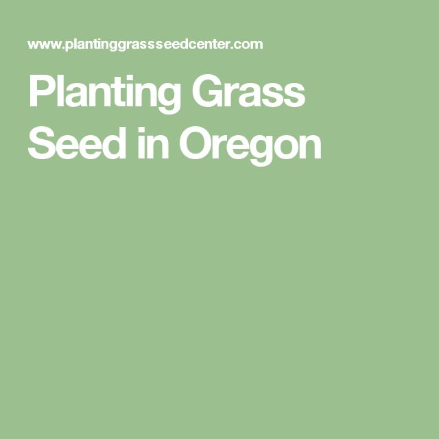 Planting Grass Seed in Oregon