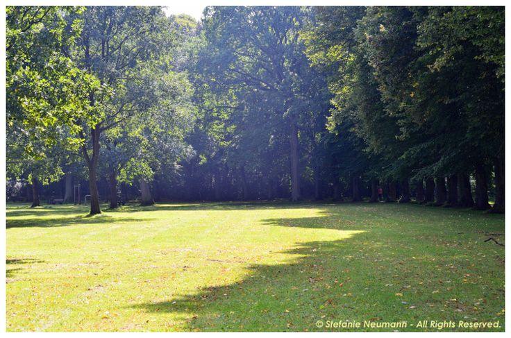 KOKOPELLI BEE FREE #NEWSLETTER - #MABON 2017: #KBFNeuigkeiten und Gedanken über #Erholung. ♥ #KBFNews und musings on #recreation.   #KokopelliBeeFree #KBFN #Autumn #Herbst
