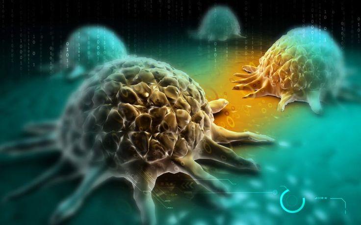 Πώς ο καρκίνος αυτοθεραπεύεται
