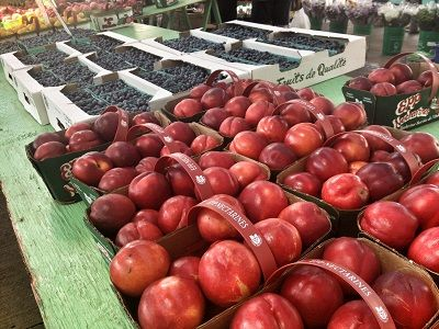 St. Catharines Farmers' Market (Aug, 2013) https://www.stcatharines.ca/en/experiencein/StCatharinesFarmersMarket.asp