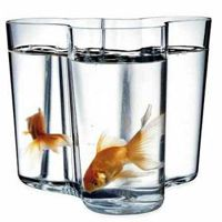 Iittala Alvar Aalto vase with goldfish swimming in it