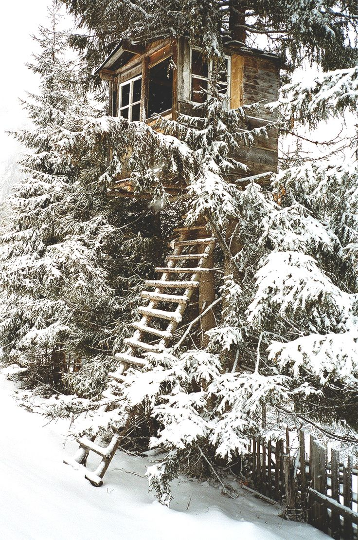 Snowy Tree House / The Green Life <3