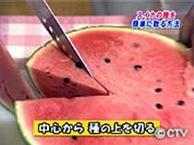 食べ物 スイカ VOL.61