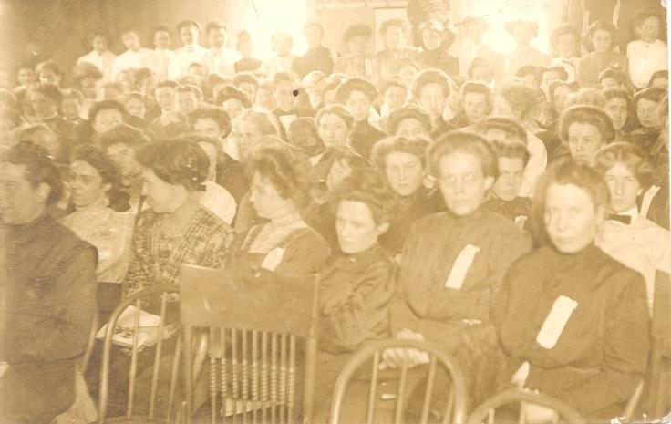 Seneca Falls Convention, Voting equality