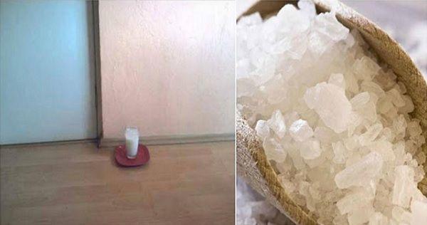 Nechte doma pohár s vodou, solí a octem a uvidíte ty změny za 24 hodin. NEUVĚŘITELNĚ! |