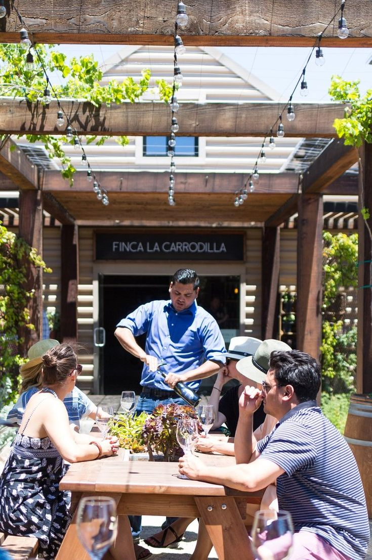 Salt & Wind | Travel for Food Lovers | Travel to Mexico With Us! | Baja California Valle De Guadalupe Wine Tasting #wine #winetasting #bajacalifornia #mexico #mexicanfood #traveling #travelmore #traveltips