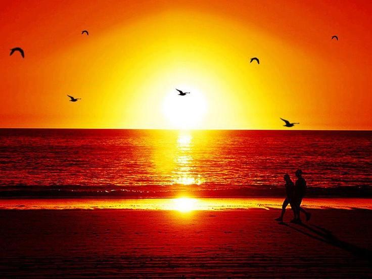 w zachodzącym słońcu