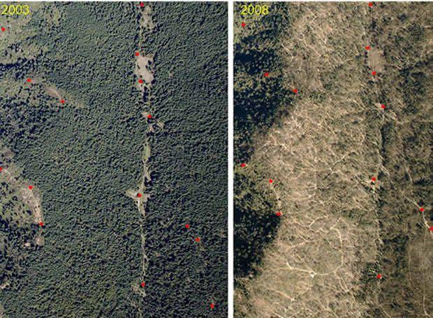 deforestacion amazonas antes y despues - Buscar con Google