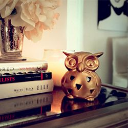 Give this $1 owl a make over with just two coats of metallic gold spray paint.