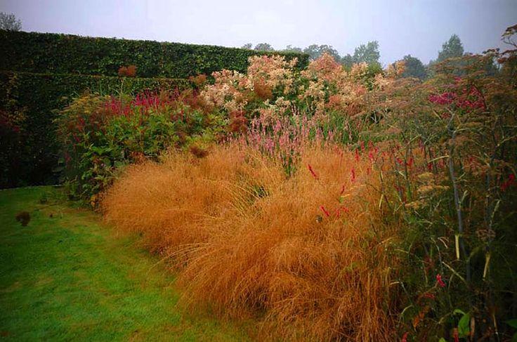 68 best images about tuin piet oudolf on pinterest for Piet oudolf plant list